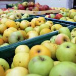 Körbe mit Äpfel gefüllt