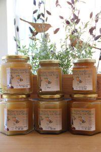 Honig aus Greifenhain